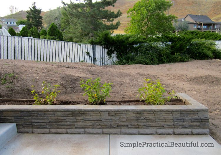 A Small Retaining Wall Front Yard Inspiration