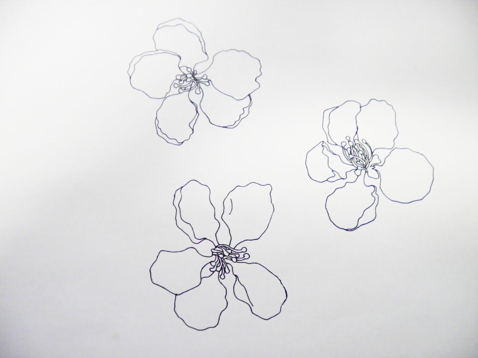 Line Art Flower Drawing : Line drawings of flowers google search lines letters doodles