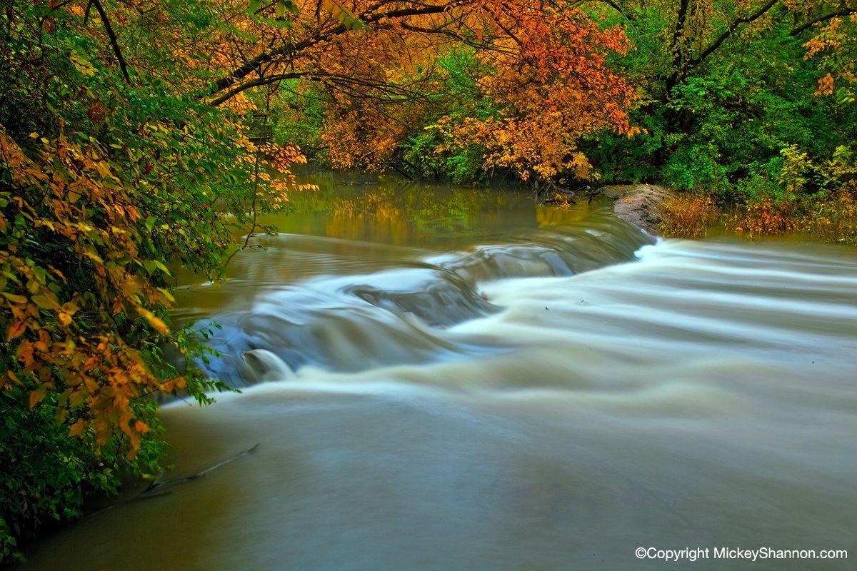 Found Some Interesting Scenes At Chisholm Creek Park In Wichita Kansas During Beautiful Autumn