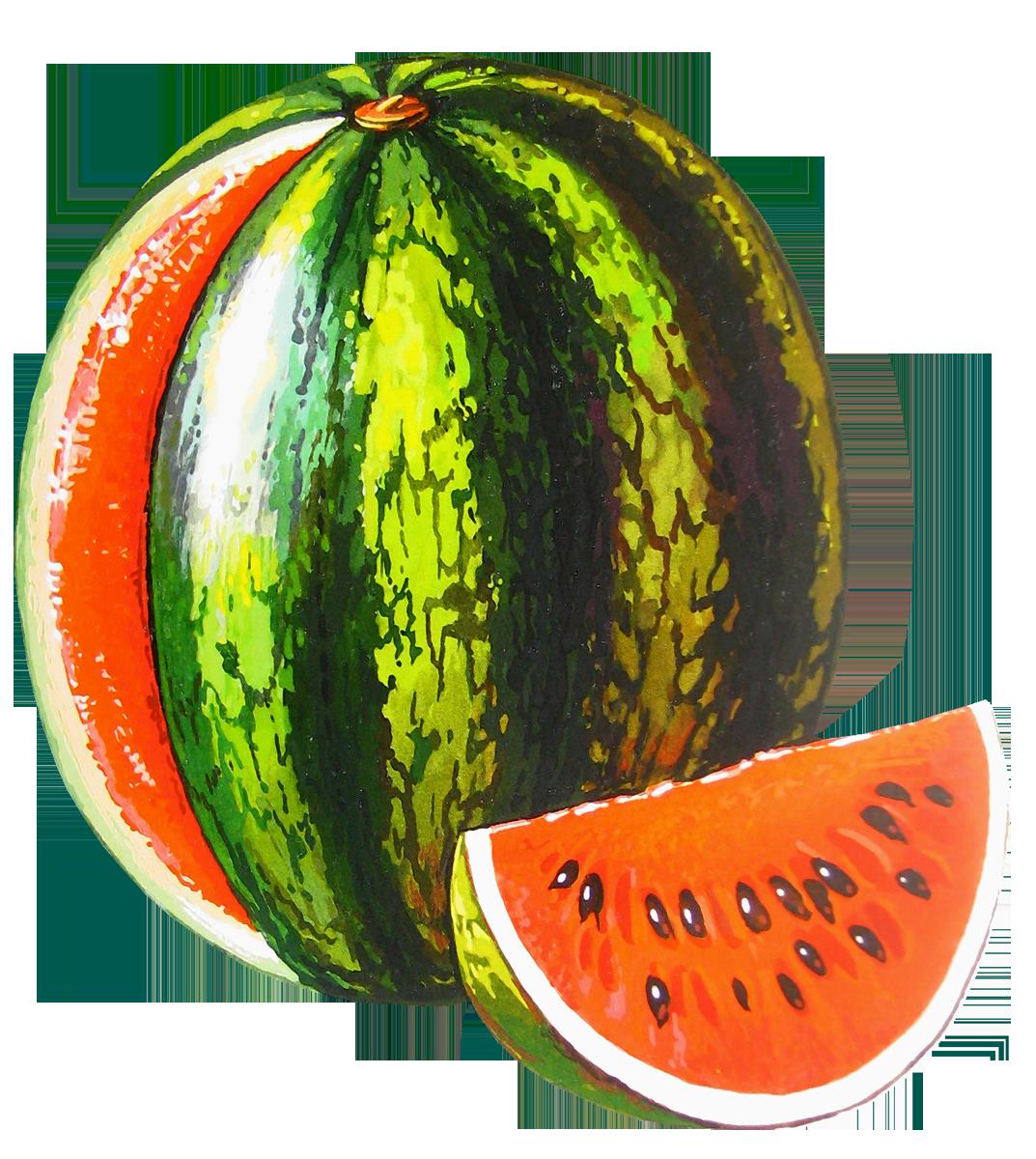 Watermelon Png Image Watermelon Fruit Photography Melon