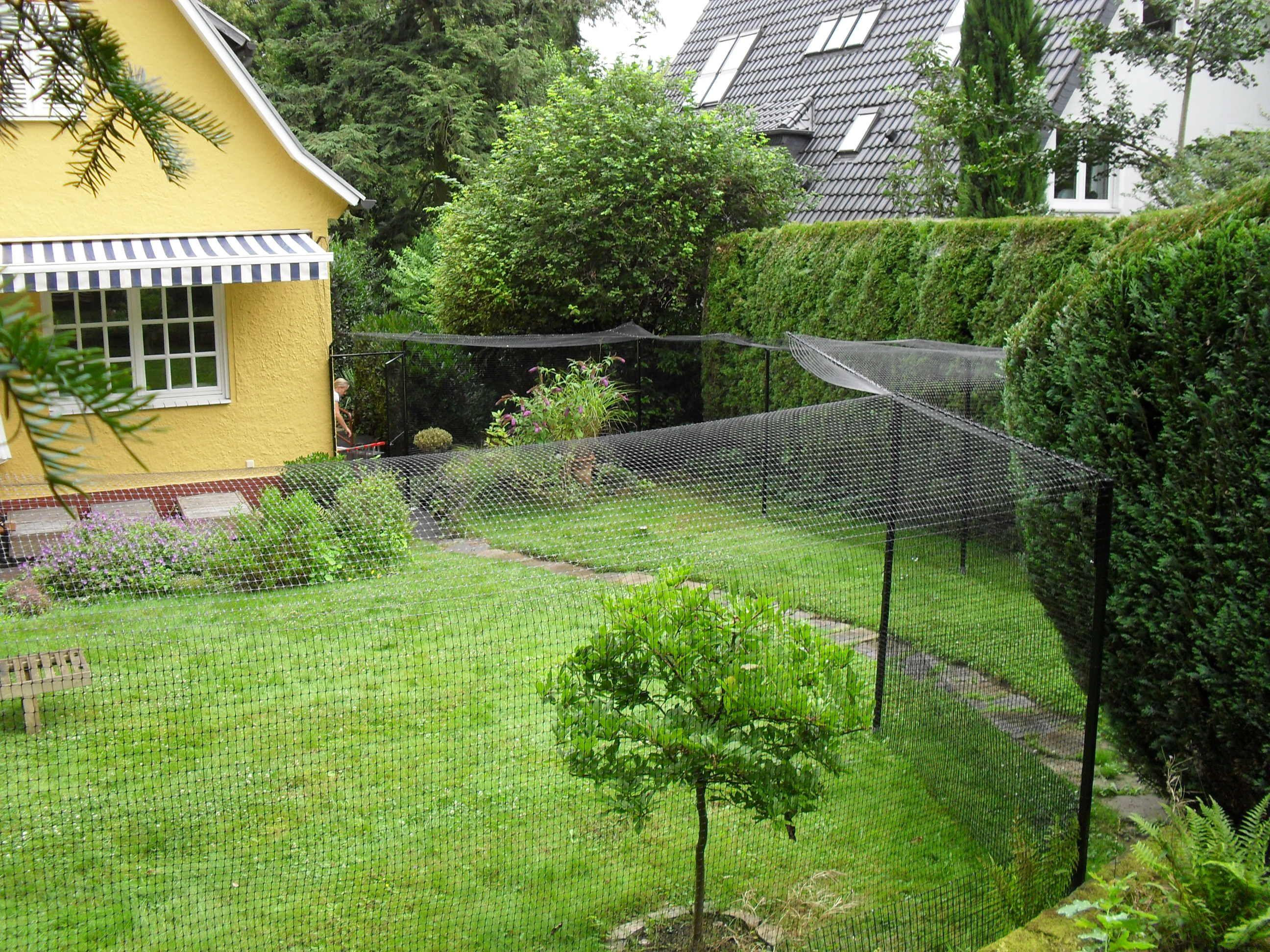 katzengehege system zur gartensicherung | nice yard | pinterest