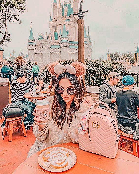 8 Disneyland Lightroom presets mobile lightroom presets Blogger Insta
