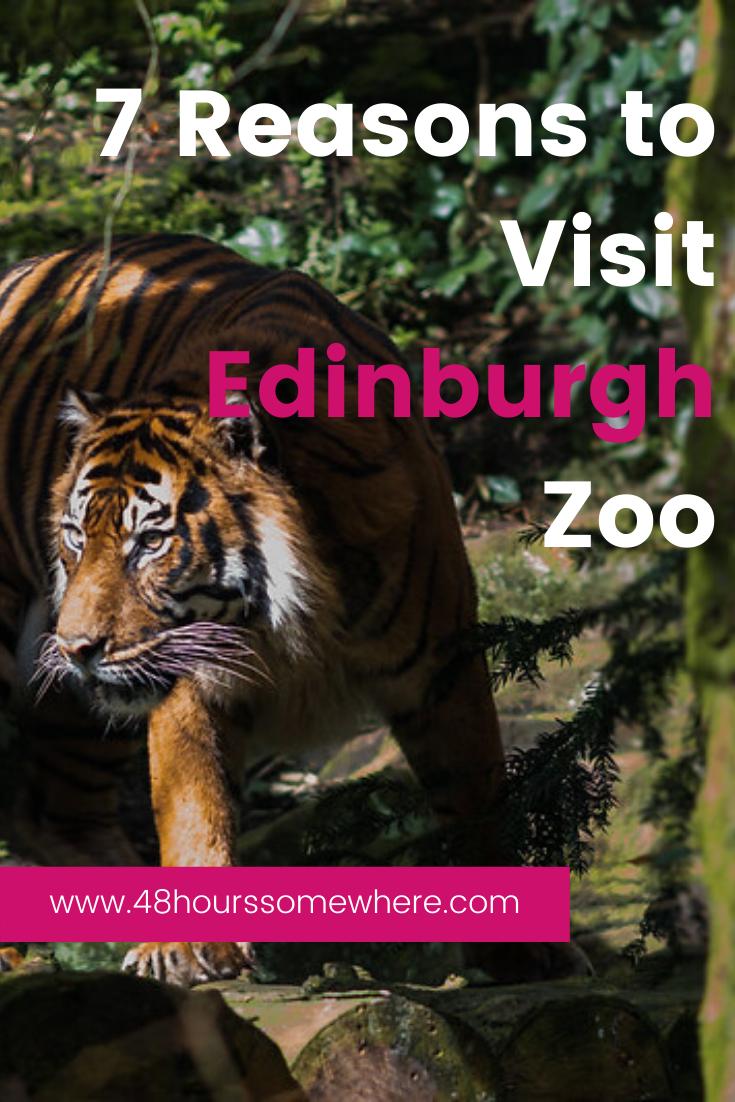 Edinburgh Zoo Map Zoo Map Edinburgh Zoo Zoo