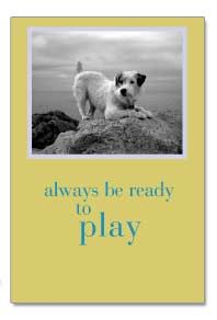 Cardthartic Birthday Card ~Always be ready to play.  And, for dog's sake, never act your age! Happy Birthday!