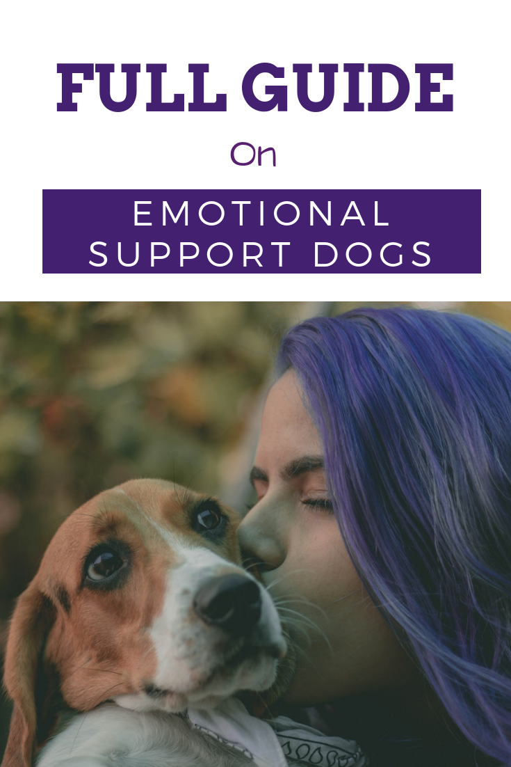 Emotional Support Dog Registration, Training, Laws in U.S