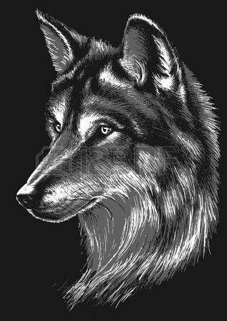 T te de loup noir et blanc tete loup pinterest loup noir loup et loup blanc - Image de loup a imprimer ...