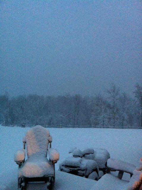 Teresa Clark sent in this picture from the Left Fork of Union Ridge in Lesage, WV.
