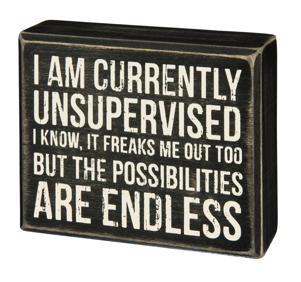 Latest Funny Signs  I Am Currently Unsupervised Box Sign in Black Wood with White Lettering 5