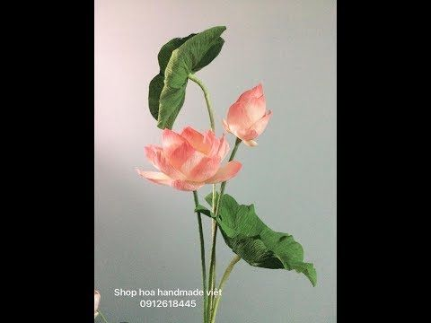 Diy Paper Lotus Flower From Crepe Paper Part 1 Hoa Sen Bằng
