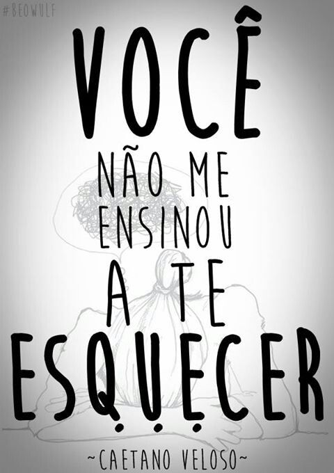 Caetano Veloso Voce Nao Me Ensinou A Te Esquecer Letras De