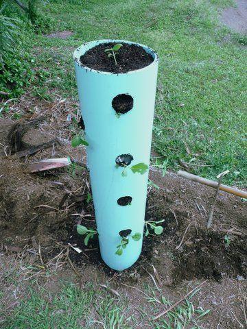 Diy comment faire une tour de fraisiers avec un tuyau pvc jardinage pinterest tuyaux en - Comment decoller un tuyau pvc ...