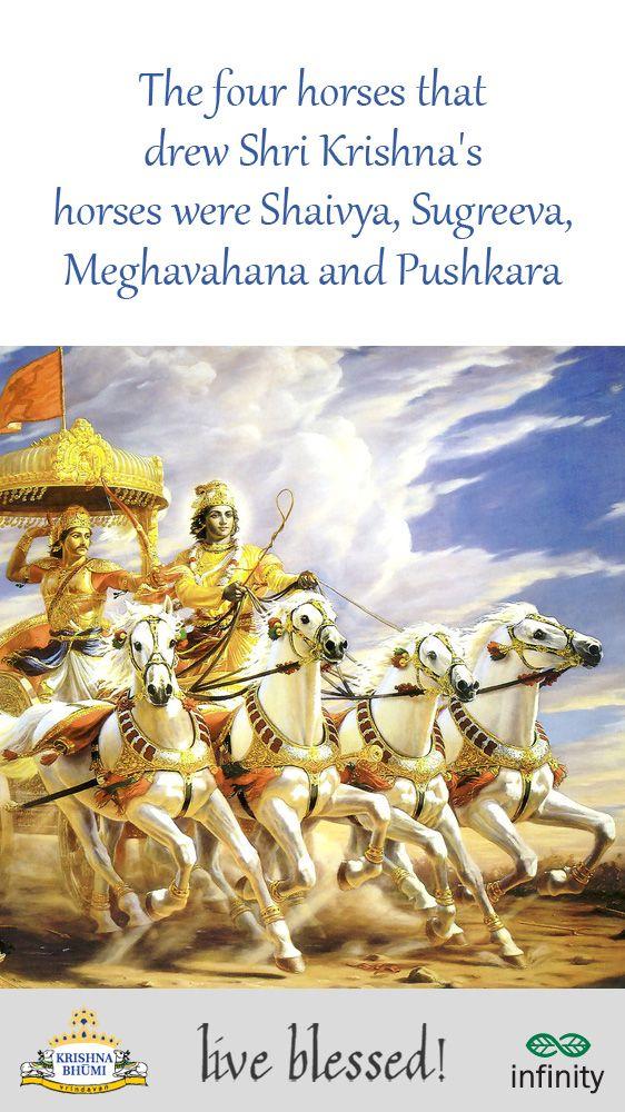 Do you know Krishna's Chariot was pulled by 4 horses & they were called Shaivya, Sugreeva, Meghavahana and Pushkara .