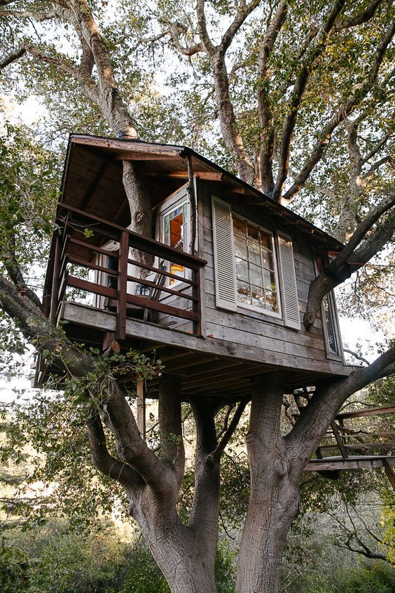 Pin By Tamara On Treehouses Huts And Hideaways Tree