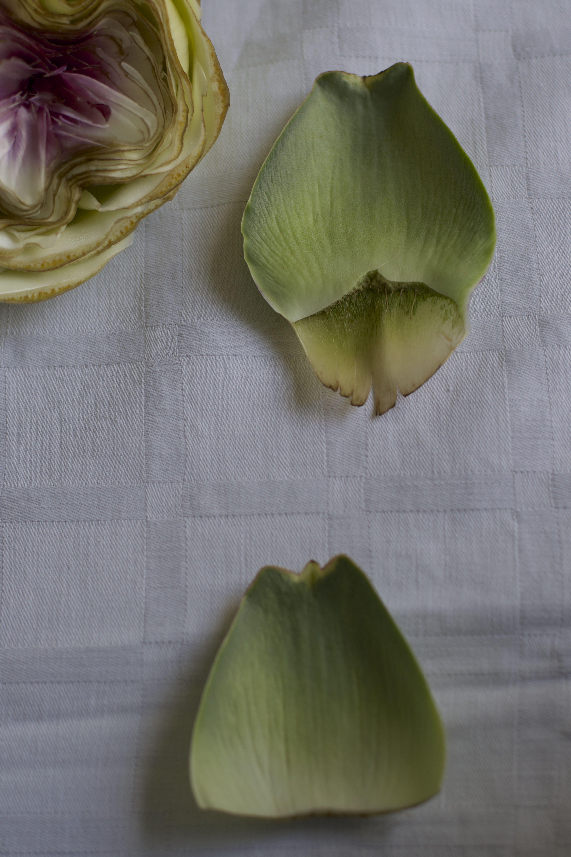 die besten 25 artischocken kochen ideen auf pinterest artischocken gesund artischocken und. Black Bedroom Furniture Sets. Home Design Ideas