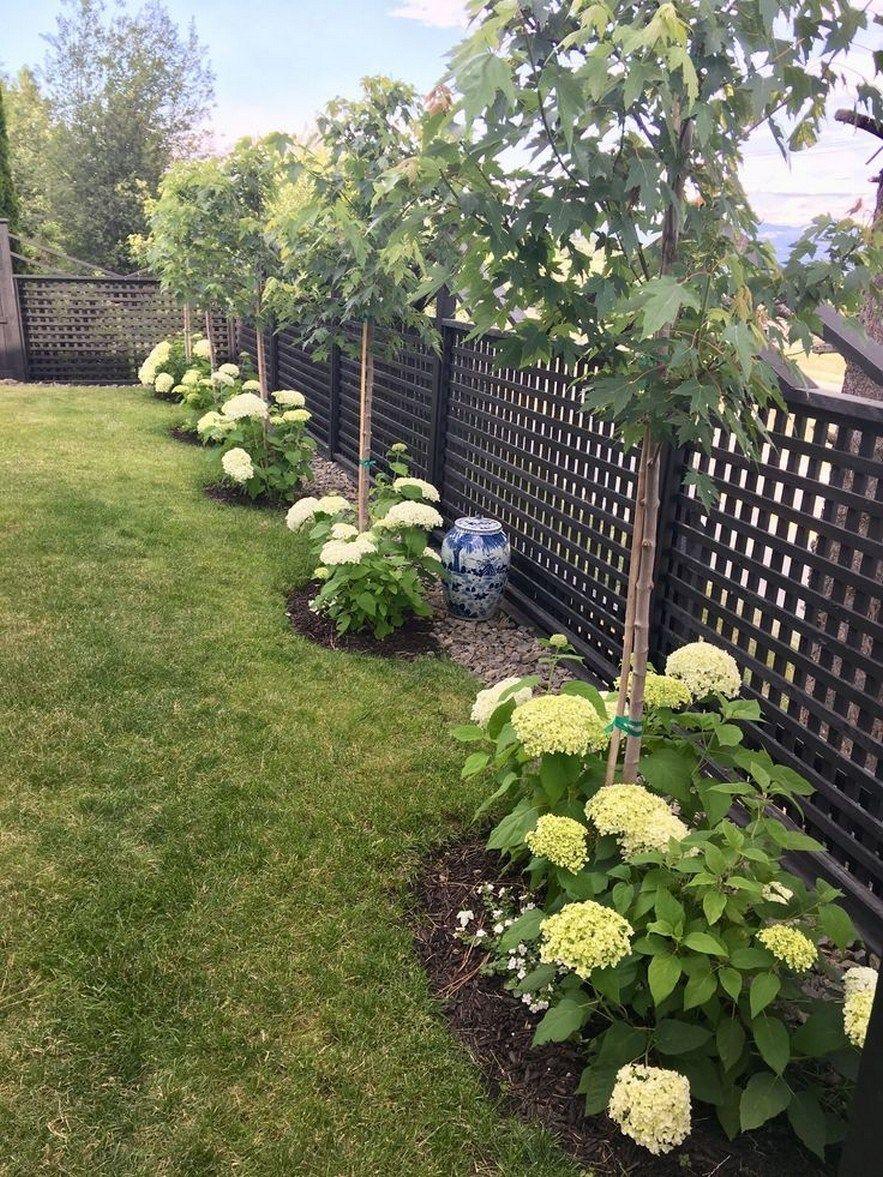 Low Maintenance Landscape Ideas Front Yard Shade Plants