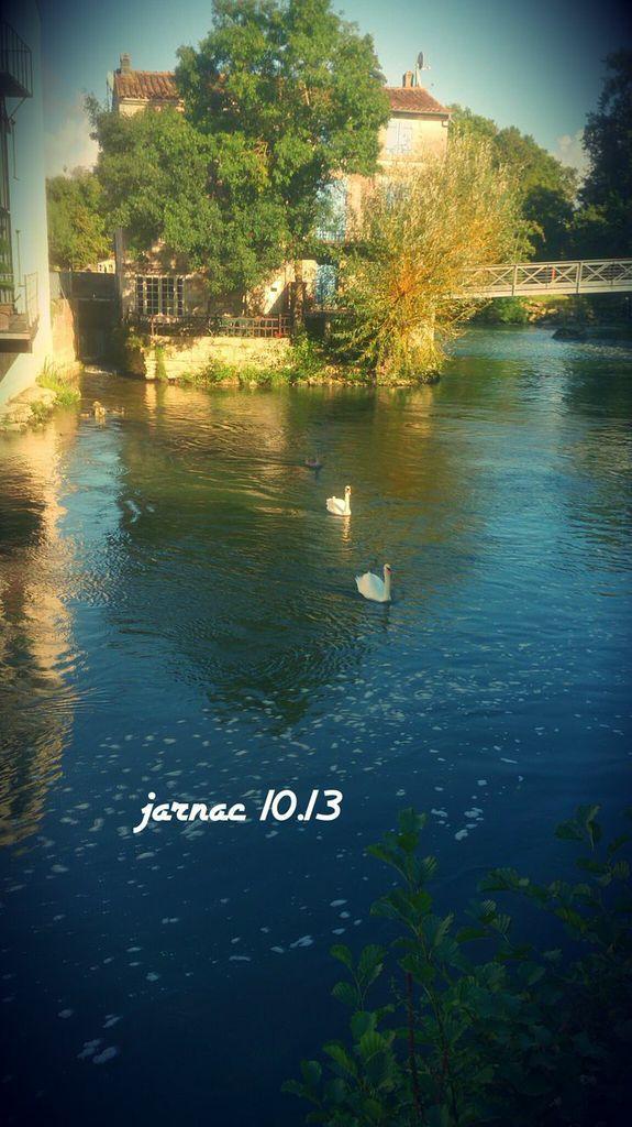 Jarnac 16