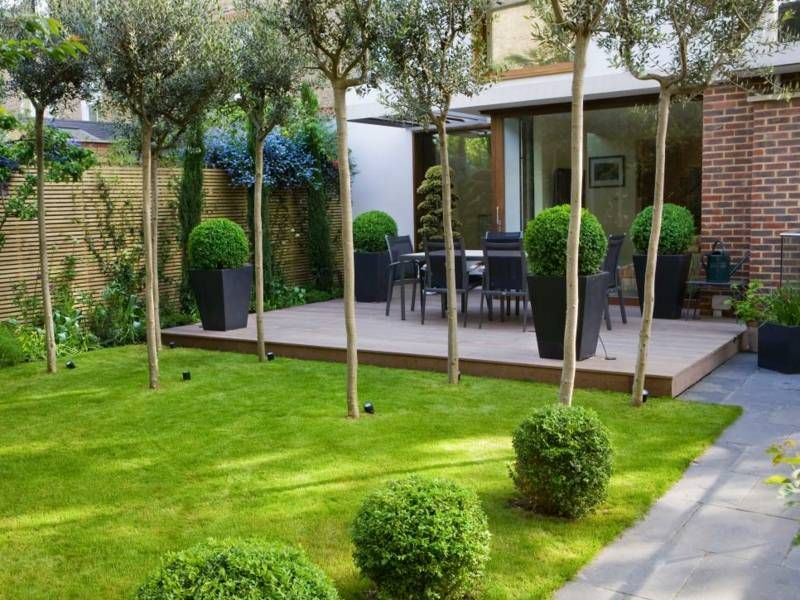 Pflanzkübel Mit Buchsbaum Um Die Terrasse Arrangieren