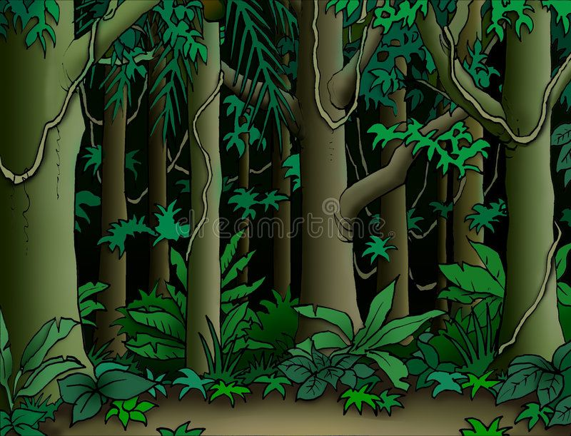 Cartoon Jungle Pictures Background