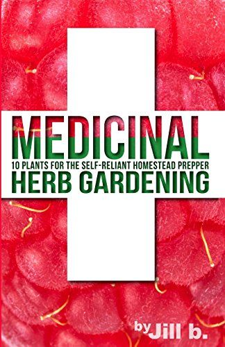 Medicinal Herb Gardening 10 Plants For The Self Reliant Https