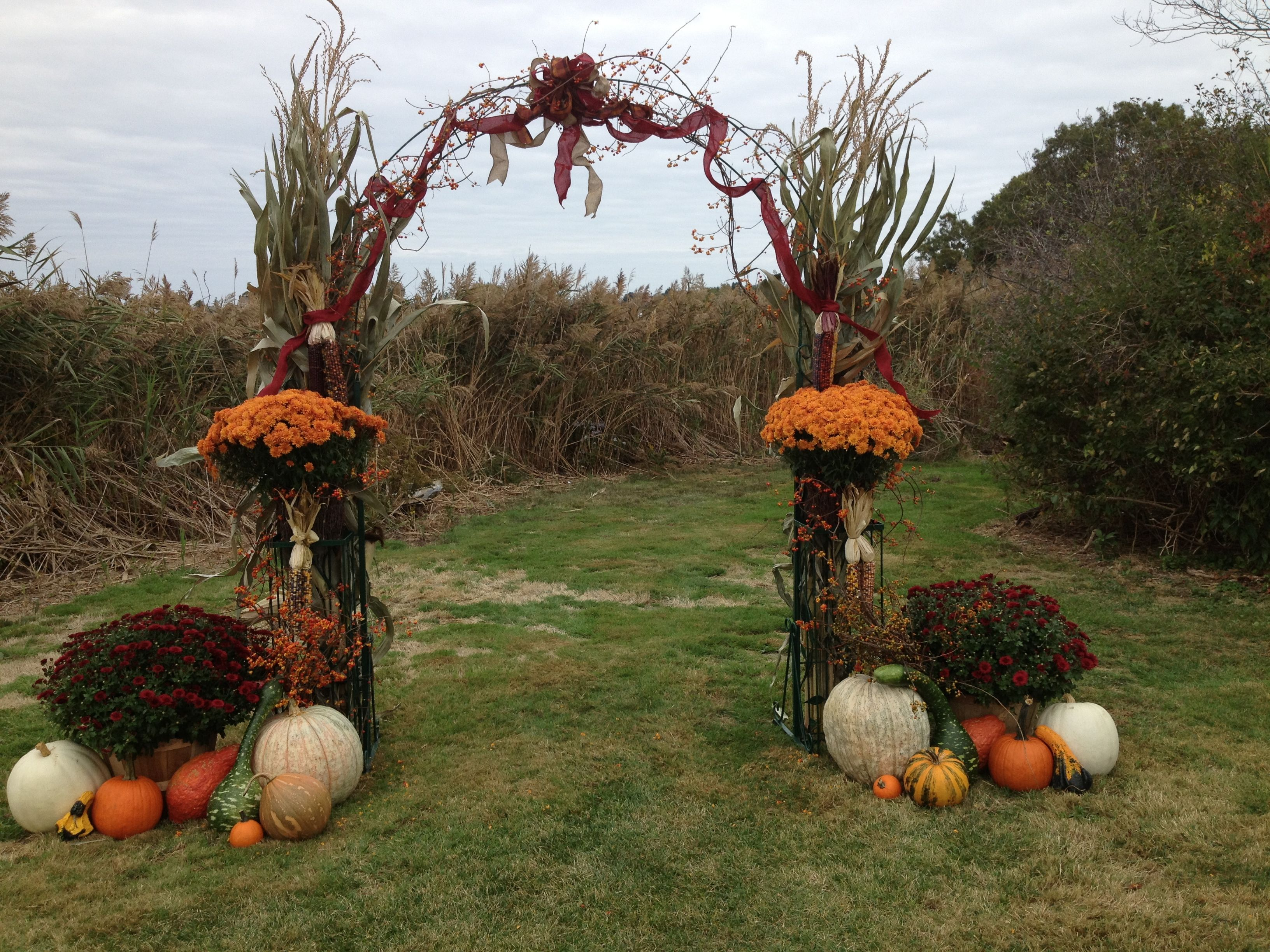 Outdoor fall wedding decor  Arch i decorated for a pretty fall wedding  Wedding arch