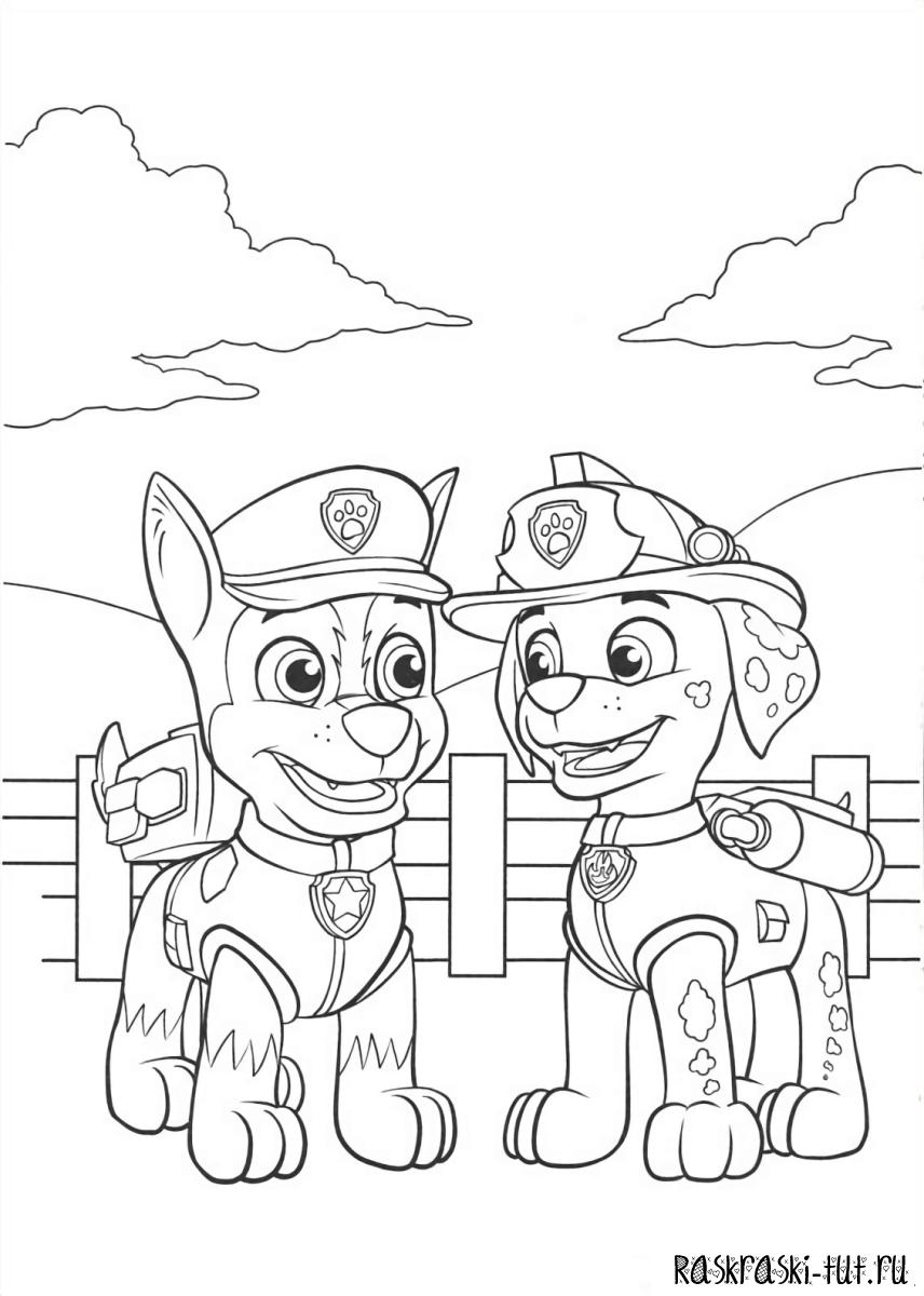 раскраска щенячий патруль герои мультиков раскраски