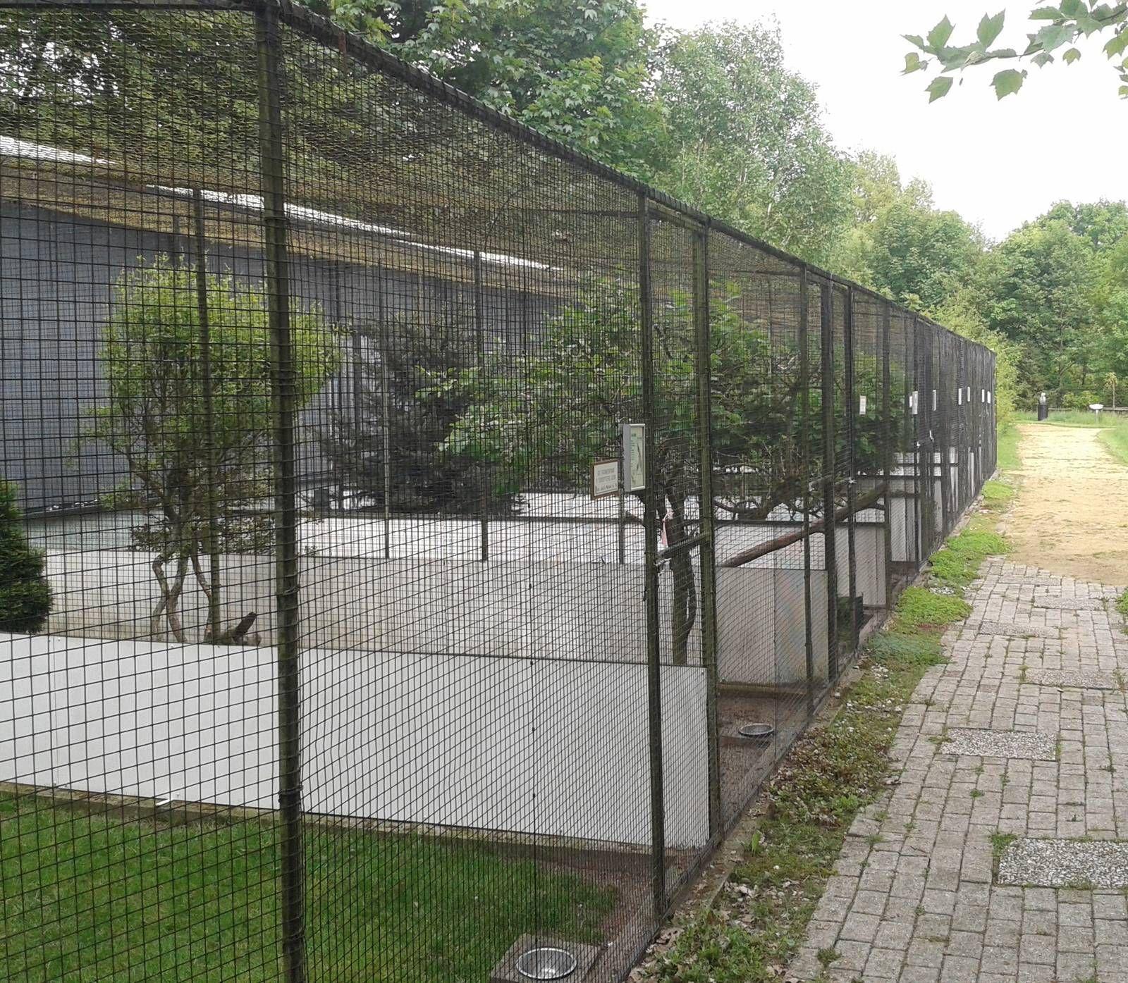 Netherlands > Fazanterie de Rooie Hoeve   Aviaries & Exhibits ...