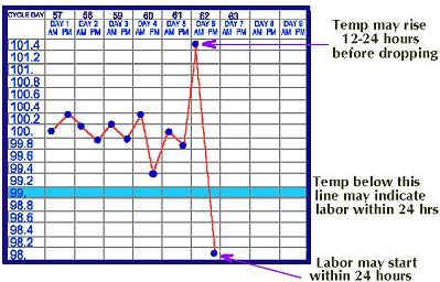 Canine+Whelping+Temperature+Chart