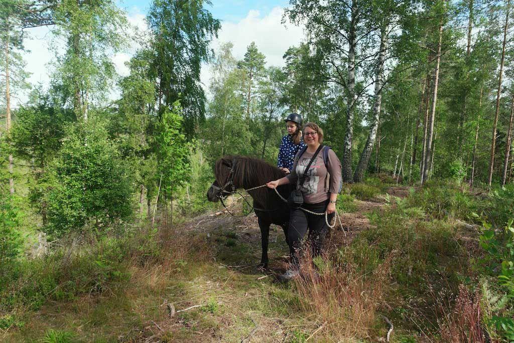 Kanoen, paardrijden, wandelen en nog veel meer actiefs, dat kan bij Kyrkekvarn in Smaland. De vakantiebestemming in Zweden voor actieve gezinnen.