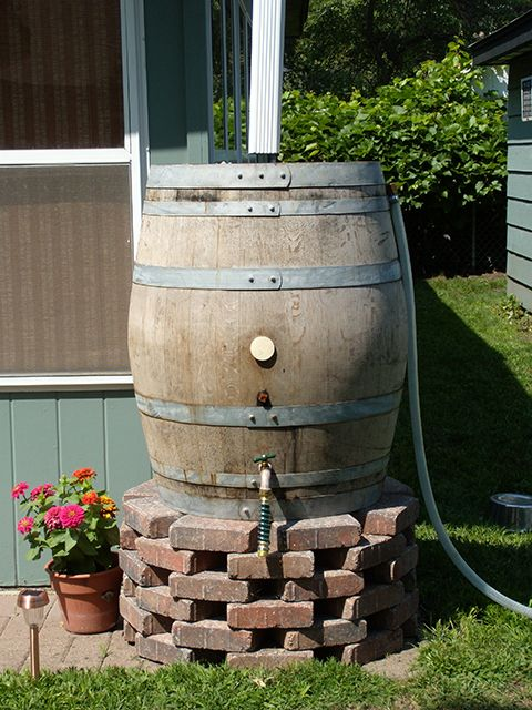 Rain Barrel On Brick Riser Rain Water Collection Rain Barrel Rain Water Collection Diy