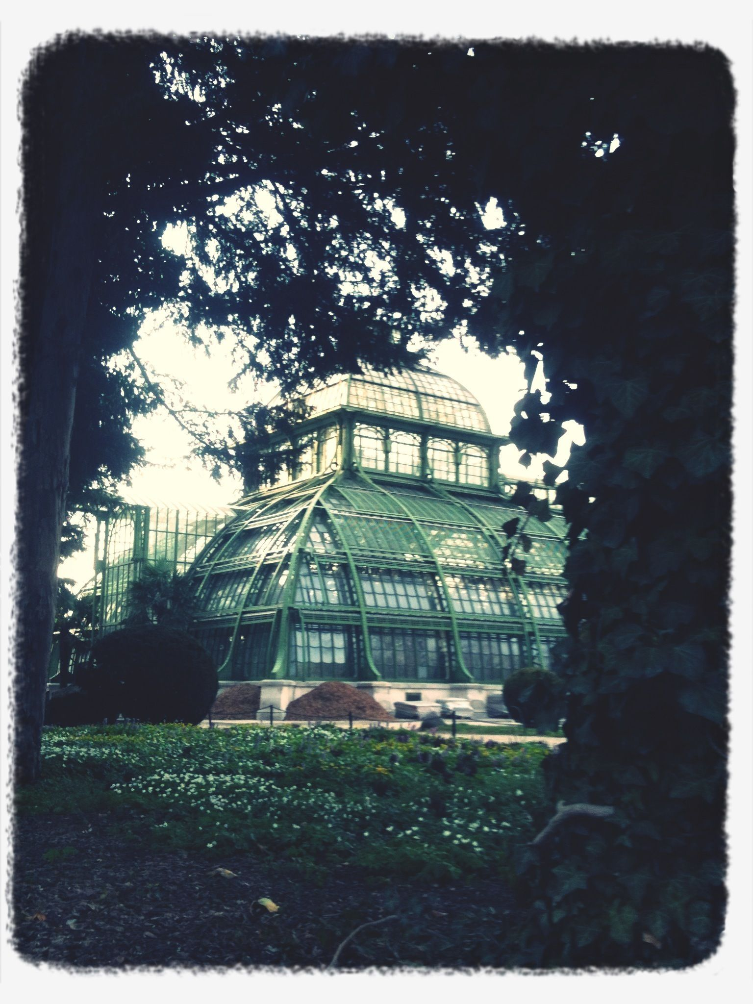 Where The Palms Grow In Vienna Palmenhaus Schonbrunn Austria Oh The Places You Ll Go Scenery The Places Youll Go