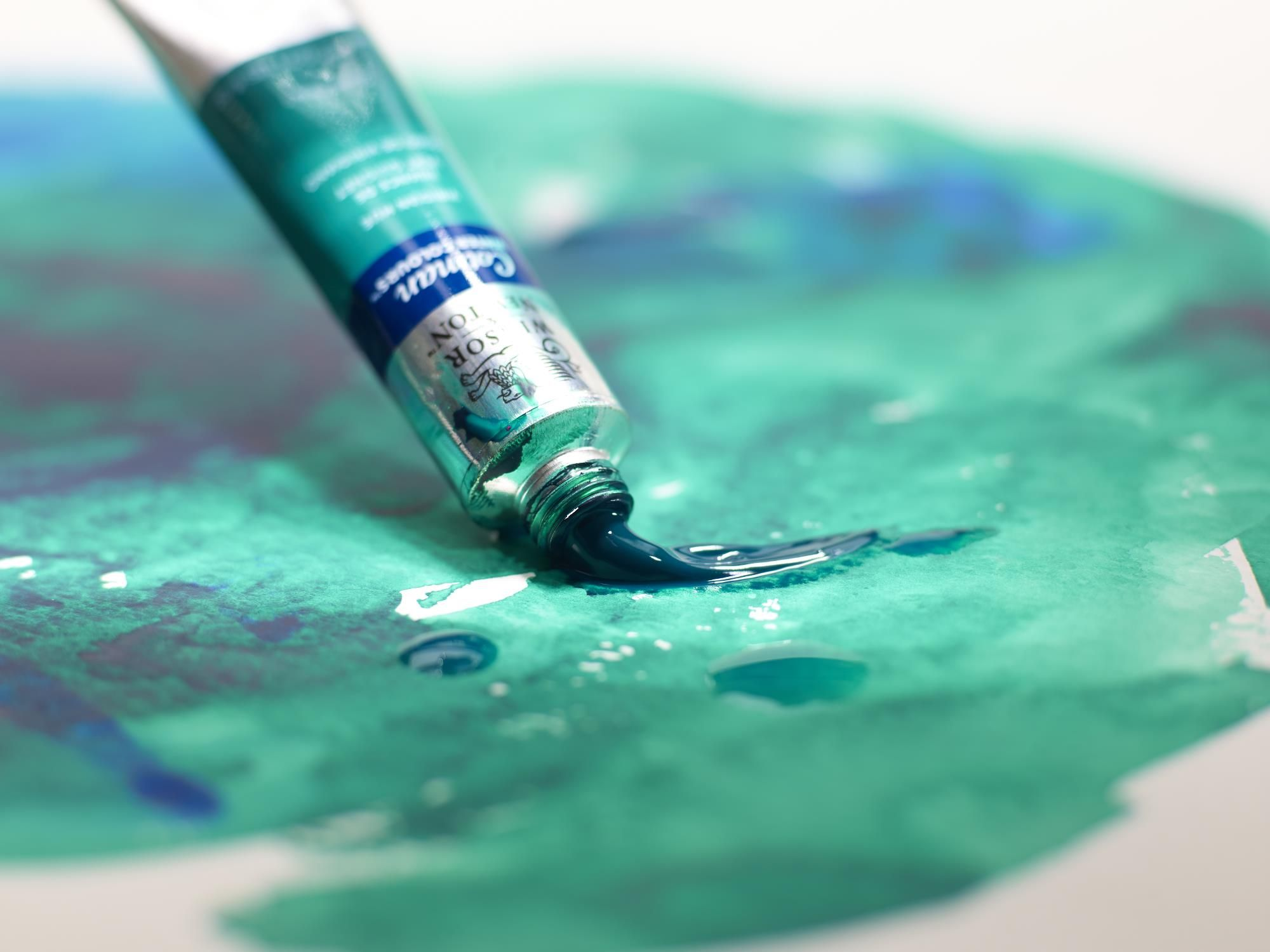 Cotman Water Colour, perfect for a more experienced painter