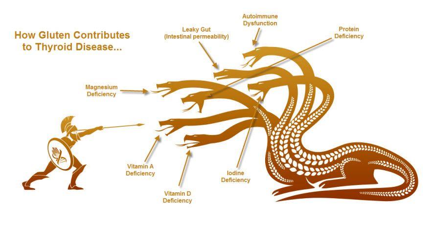 Autoimmune Thyroid Disease And Gluten Thyroid Disease