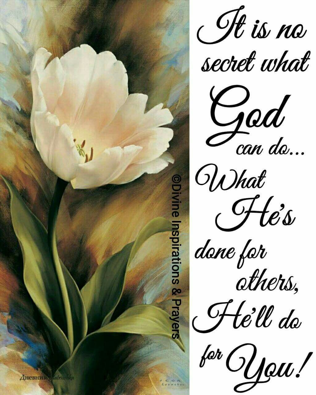 Pin by Maria Twaddle on Painting   Bible verses quotes, Bible quotes