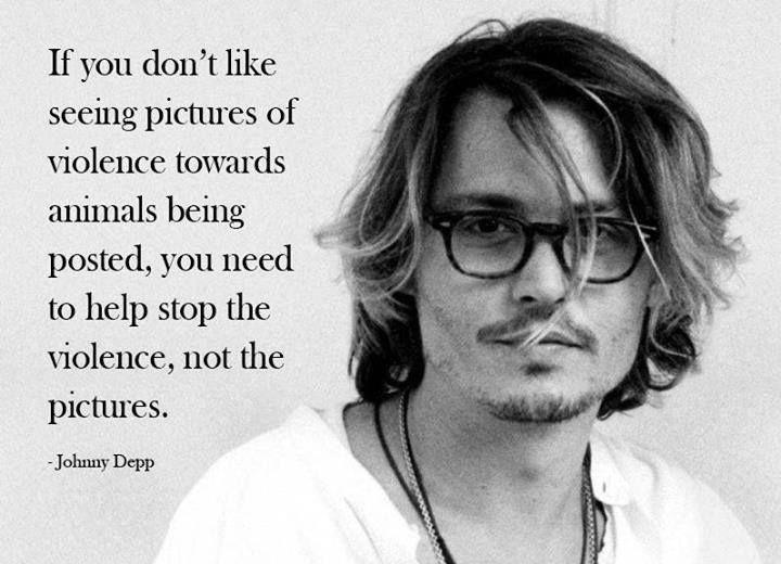Animal Cruelty Quotes Enchanting Simple Truth Animal Abuse Johnny Depp Begoodtoanimals  Heir