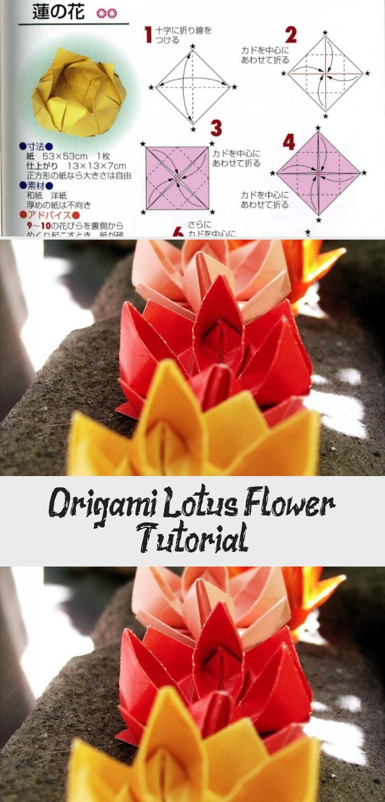 Photo of Origami Lotus Flower Tutorial über Papier Kawaii #origamiRabbit #origamiUnicorn #D …