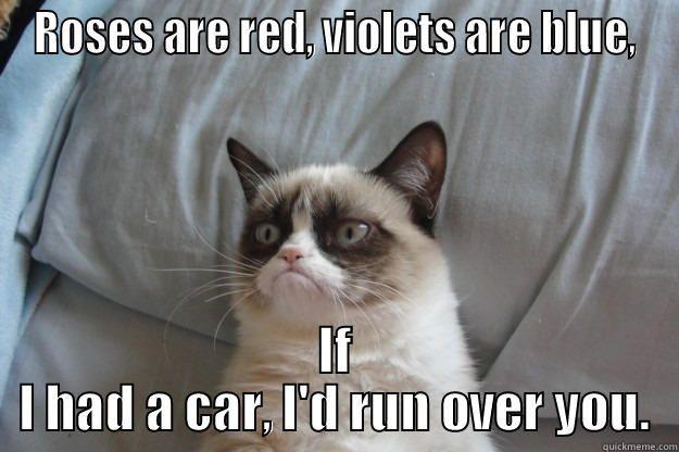 Grumpy Cat S Valentine S Day Poem Grumpy Cat Humor Grumpy Cat Quotes Grumpy Cat Meme