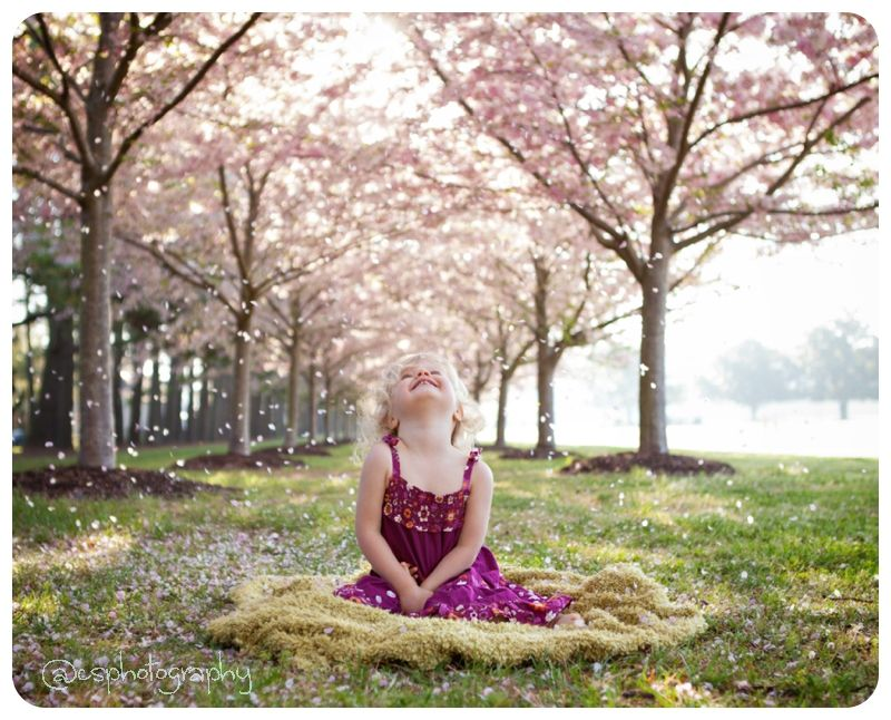 Cherry Blossoms Spring Photoshoot Family Portrait Poses Outdoor Photoshoot