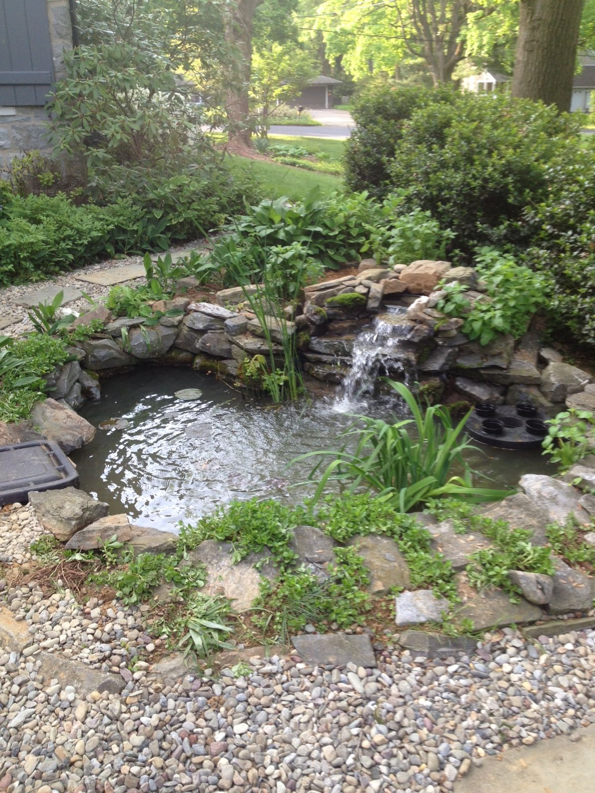 Biofalls and Skimmer addition to an existing Pond.... | Water ...
