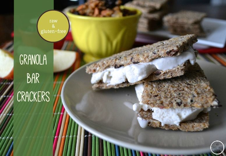 "Raw, gluten-free ""Granola Bar"" Crackers from An Unrefined Vegan."