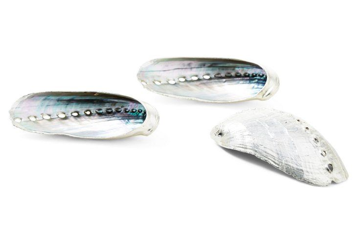 S/3 Silver-Plated Abalone Shells