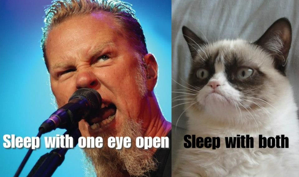 Grumpy Cat doubles what Metallica does :)