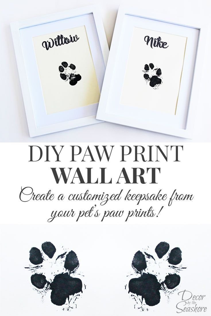 How cute is this DIY paw print wall art  What an adorable memento for their  little paw prints. I so need to do this with my dogs!  88494f8fd00