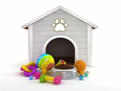 Doggie Daycare business ideas Pet organization, Pet