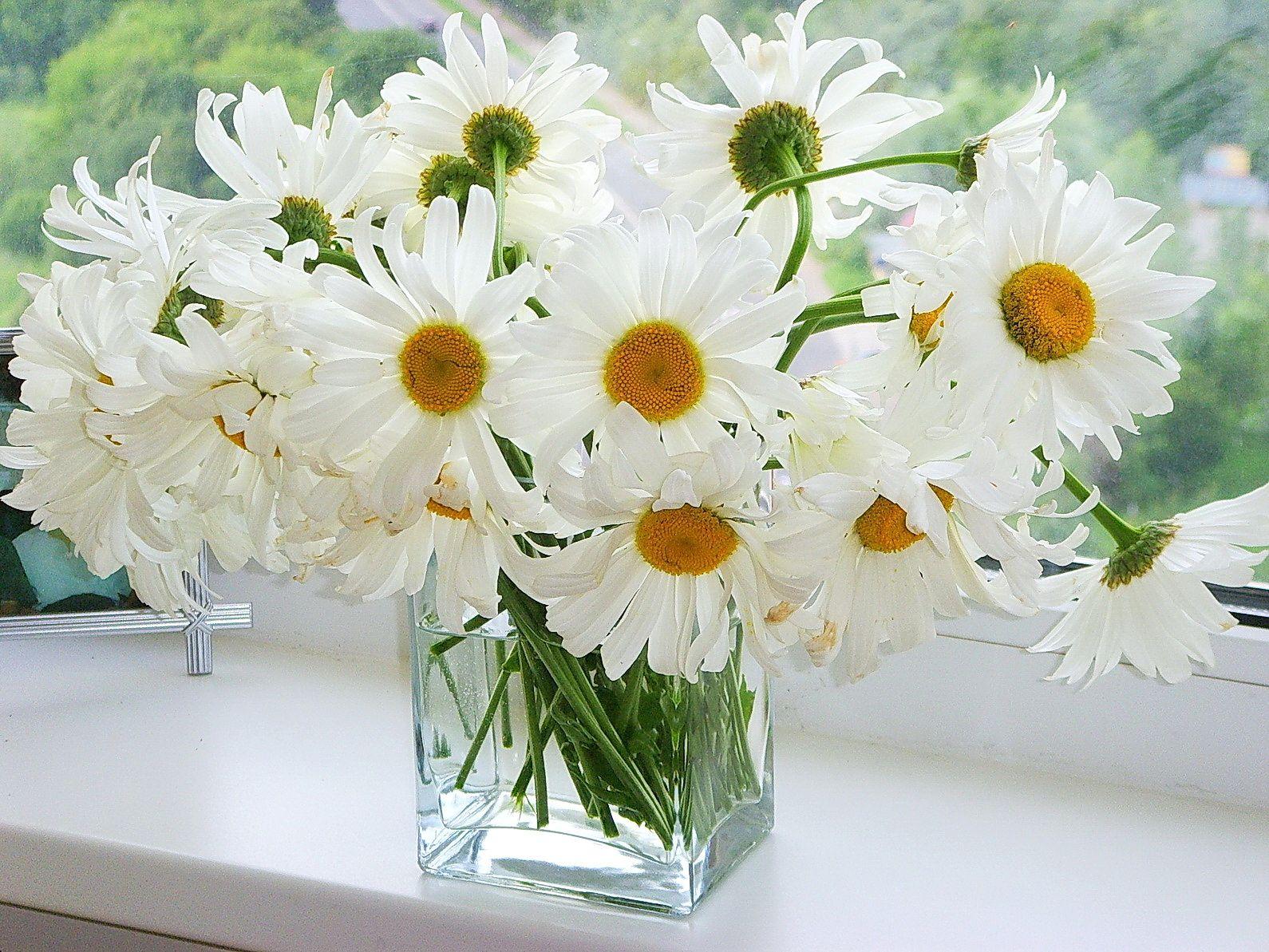 С днем рождения картинка с цветами белая