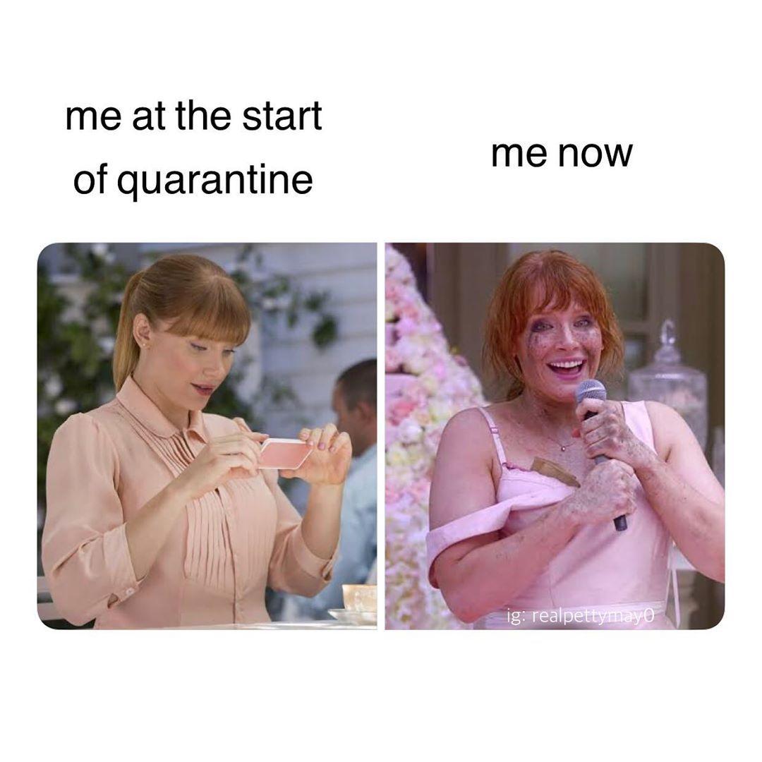 Meme S Quotes Memes Its Memes Laughing Memes Memes Quotes Funnie Memes I Meme Truthful Memes Happy Meme Funny Relatable Memes Funny Memes Stupid Memes