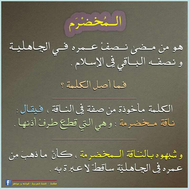 أصل كلمة المخضرم في اللغة العربية Learn Arabic Language Arabic Language Beautiful Arabic Words