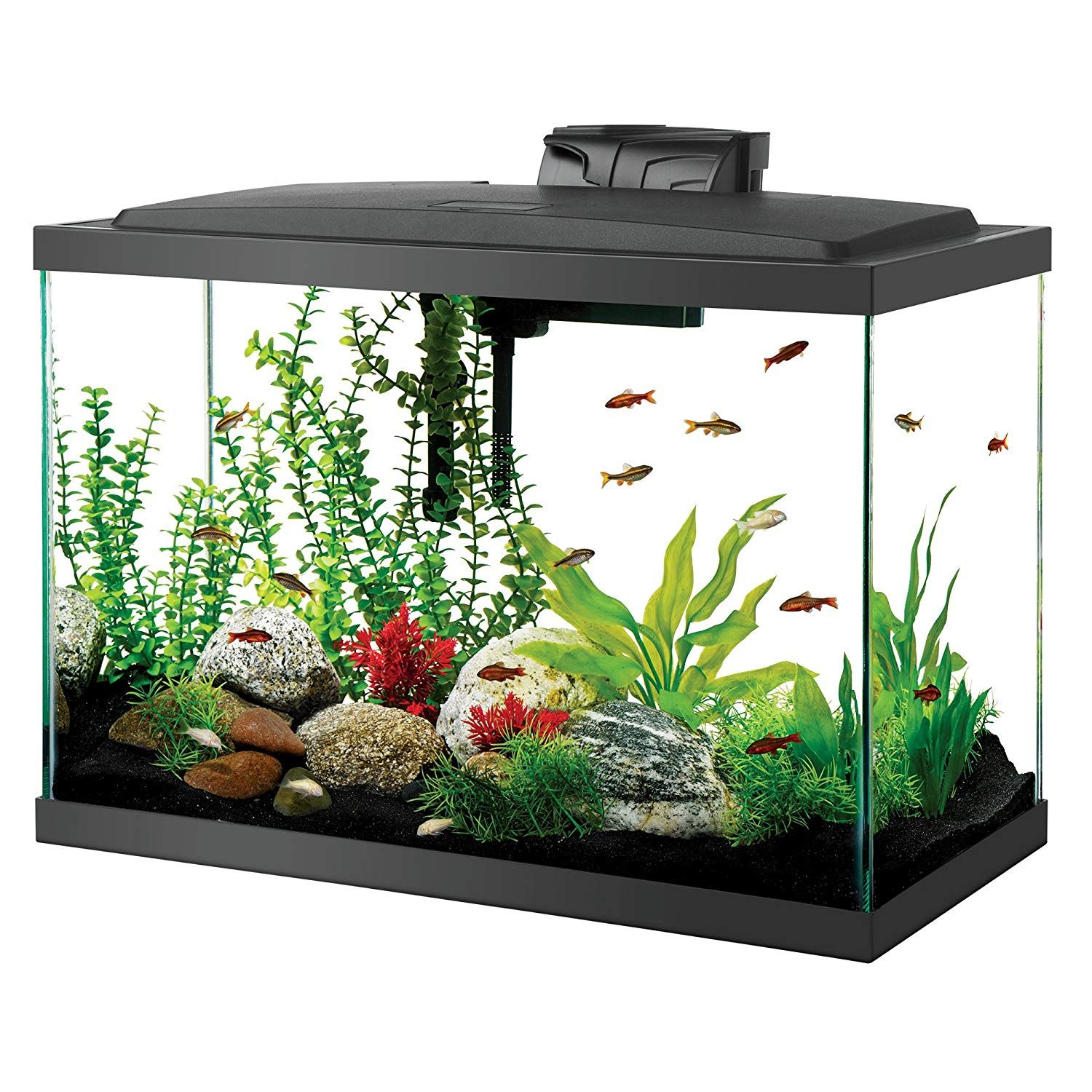 Salt Water Aquarium Set Up Low Profile Full Hood Contains Vibrant Cool White Led Lighting To Bring Your Aquatic Envir Aquarium Kit Aquarium Fish Tank Fish Tank