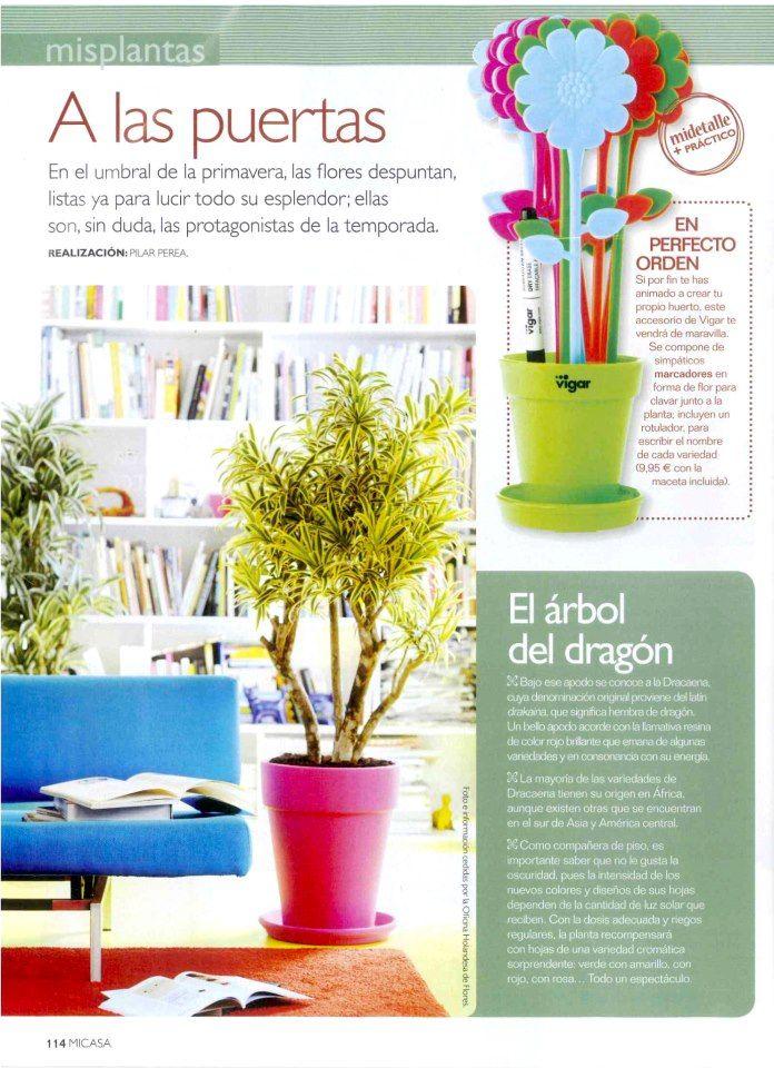 Nuestros Marcadores De Plantas En La Revista Mi Casa