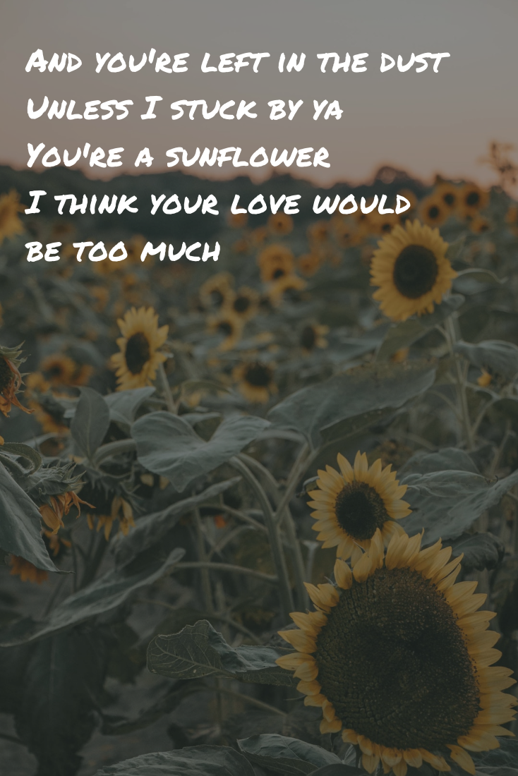 Sunflower By Swae Lee Post Malone Lyrics And You Re Left In The Dust Unless I Stuck By Ya In 2020 Post Malone Lyrics Post Malone Quotes Post Malone Wallpaper