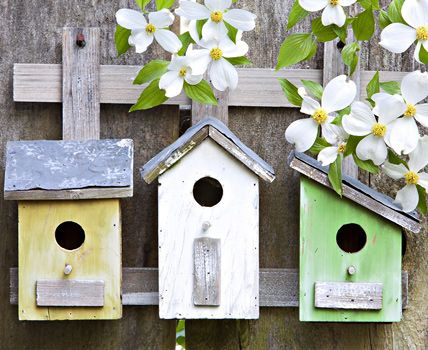 gartendeko selber machen ideen tipps birdhouses feeders pinterest nistkasten garten. Black Bedroom Furniture Sets. Home Design Ideas